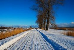 1134090_winter_landscape.jpg