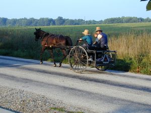 253619_amish_drive-by.jpg